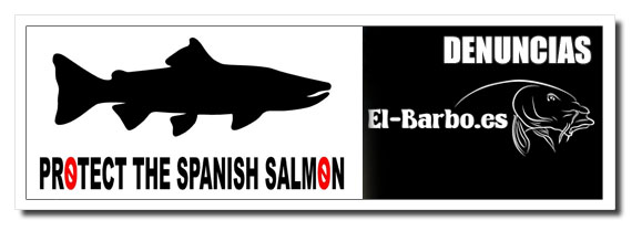 protect_the_spanish_salmon