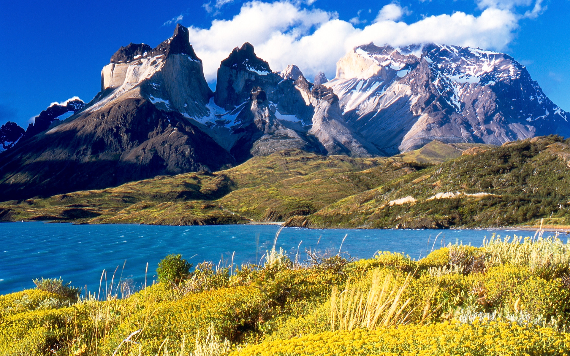 Reglamento de pesca en Patagonia